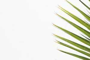 2020住院医师规培考试宝典急诊科新疆住院医师规培终极考试模拟试卷(L6)